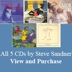 thumbnaiols of 5 Steve Sandner CDs with link